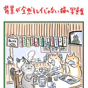 背景が全然キレイじゃない猫の写真集 / スミダカズキ