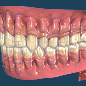 【3D素材】口の中モデル