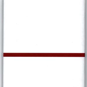 再々販 4月始まり 2021年 御札狐 スケジュール手帳  イラストカバー2枚付き B6 全64ページ 狐の嫁入り 丑 和
