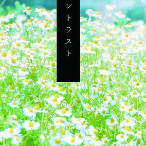 【及川×谷地】コントラスト
