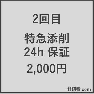 科研費.comの特急添削 24時間以内保証(2,000円)2回目
