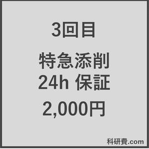 科研費.comの特急添削 24時間以内保証(2,000円)3回目