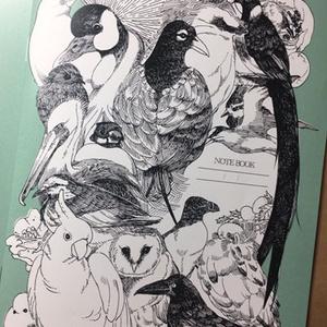 鳥類無地ノート