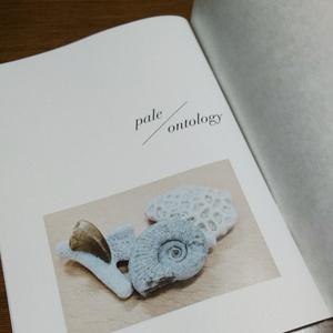 pale/ontology