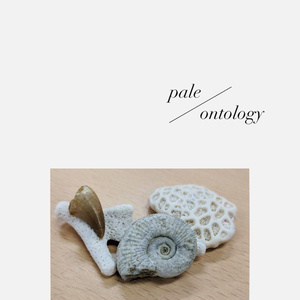 pale/ontology