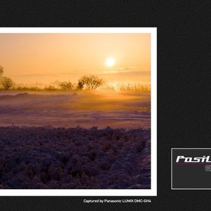 PosiLook Expert V1  Ver.2.00 (for Panasonic)