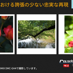 PosiLook Expert S1 Ver.2.00(for Nikon)