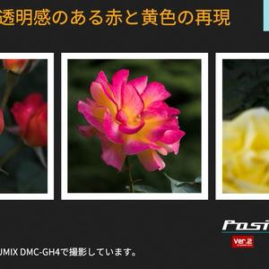 PosiLook Expert P1 Ver. 2.10 (for Xiaomi YI M1)