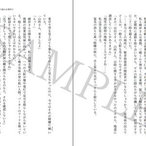 【PDF版 小説】 希望探偵少女 上巻