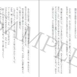 【PDF版 小説】 希望探偵少女 下巻