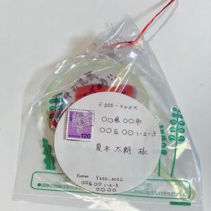 金魚すくいのレターセットB(らんちゅう、桜東錦、東錦)