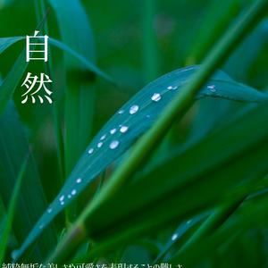 写真集Vol.1 「狭間」
