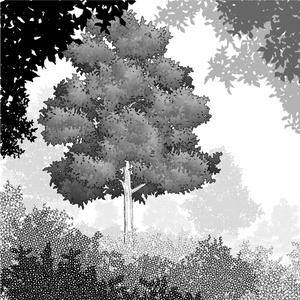 葉っぱブラシセット