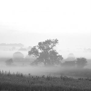 霧雨が降る街