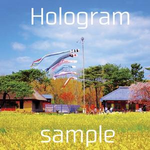 Hologram/写真集