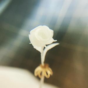 【受注生産】デコカクノ〚薔薇〛【色指定OK】