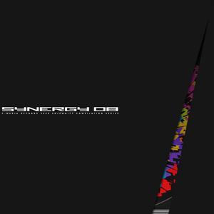 SYNERGY 08