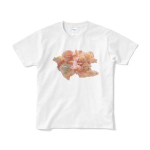 おにぎりの具Tシャツ シャケ