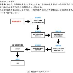〜黒林檎の部屋〜  未成年による傷害事件体験記