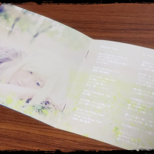 2ndアルバム『Mirror in Wonderland』