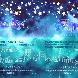 【新刊】『Notte Stellata』/文司書SS集
