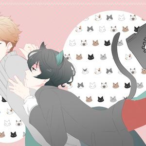 恋する仔猫