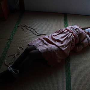 <ZIP版> DID写真集 by Sentinel #005「さらわれた令嬢」