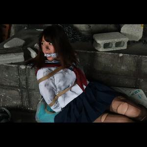 <動画/Movie> DIDムービーサンプル by Sentinel #100 (無料)