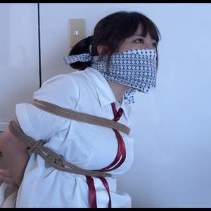 動画/MP4 #120「予期せぬ訪問者 (27分)」