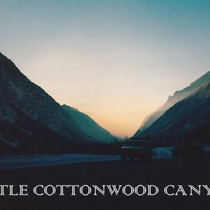 LITTLE COTTONWOOD CANYON パーカー