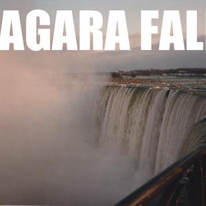 NIAGARA FALLS パーカー