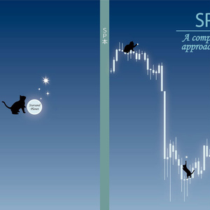 SP本 - A comprehensive approach to forex