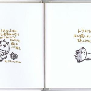 【在庫限り‼️】書籍『ちびギャラ ななっ』プチおまけ付♪