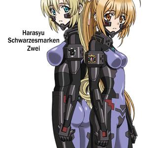 シュヴァルツェスマーケン アニメスタッフ本『Harasyu Schwarzesmarken Zwei』