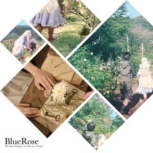 セトマリ雰囲気写真集 BlueRose