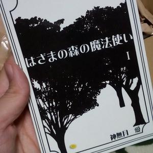 『はざまの森の魔法使い』通常版