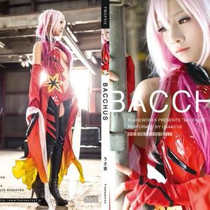FWCP012 BACCHUS