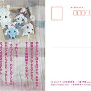 ポストカード05『動物園』