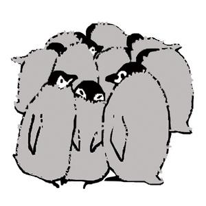 ★PGcafe★ペンギンパーカー