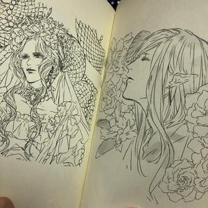 【完売】花の名前
