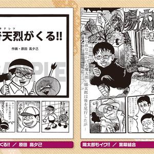 藤子不二雄合同誌 パラレルソレイユ 第13号
