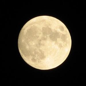 悪業に染まる月【インセイン版】
