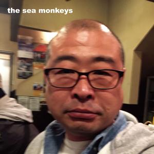 バンドCDアルバム「the sea monkeys」