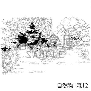 自然物の背景_セット9(森)