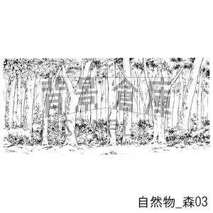 自然物の背景集_セット1(森)