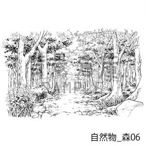 自然物の背景集_セット3(森)