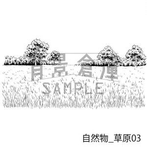 自然物の背景集_セット4(草原)