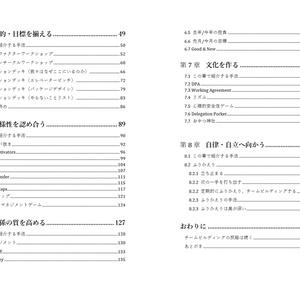 (冊子+DL版)チームビルディング超実践ガイド