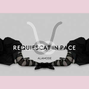 火焔猫燐 PHOTO BOOK -REQUIESCAT IN PACE-