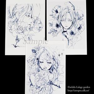 【即納】万年筆画ポストカードセット10枚